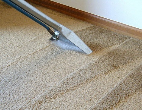 Health benefits of professional carpet cleanings
