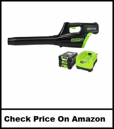 Greenworks PRO Cordless Blower, Battery Included