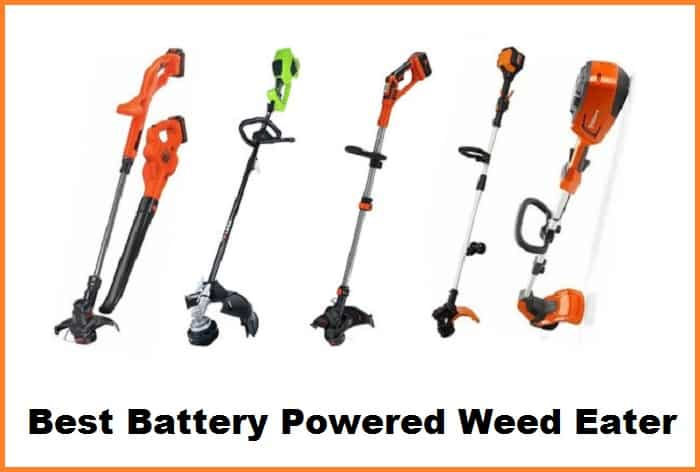 Best Battery Powered Weed Eater