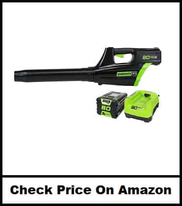 Greenworks Pro Cordless Brushless Axial Blower