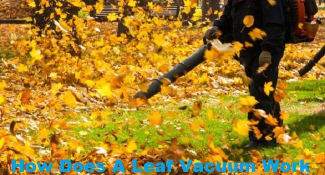 How Does A Leaf Vacuum Work