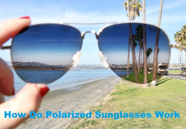 How Do Polarized Sunglasses Work