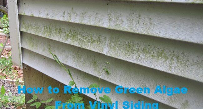 How to Remove Green Algae From Vinyl Siding