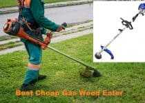 Best Cheap Gas Weed Eater
